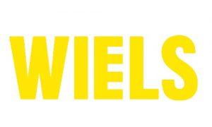 Read more about the article Appel à candidatures pour les résidences d'artistes de WIELS (Belgique).