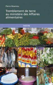 Read more about the article Littérature : L'œuvre de Pierre Ntsemou vue par Emeraude Kouka