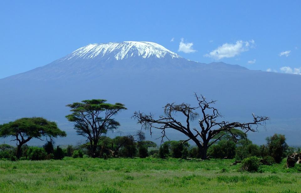 Read more about the article Manger pour pas cher au Kenya